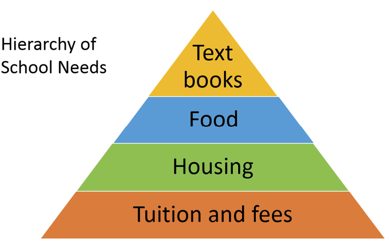 Figure 1. Hierarchy of School Needs as Suggested by Student Spending Priorities