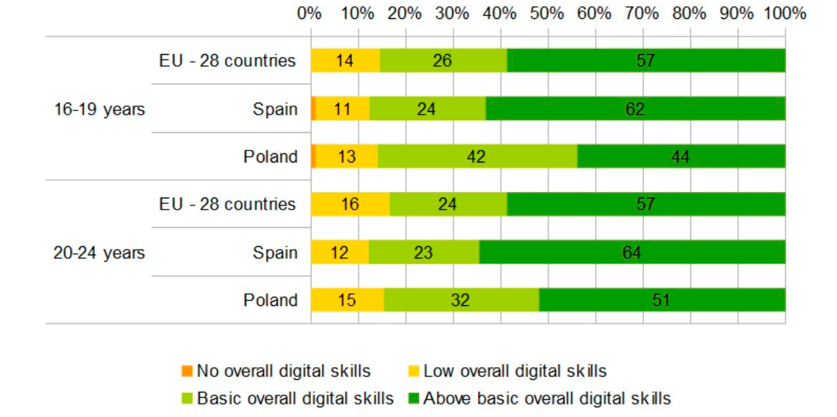 Figure 1. Assessment of Digital Competencies in 2017